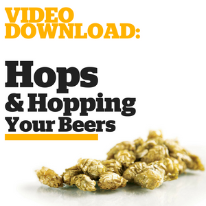 Hops & Hopping: What You Need to Know (Video Download) - Craft Beer & Brewing
