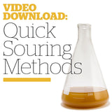 Quick Souring Methods (Video Download) - Craft Beer & Brewing
