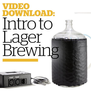 Introduction to Lagering (Video Download) - Craft Beer & Brewing