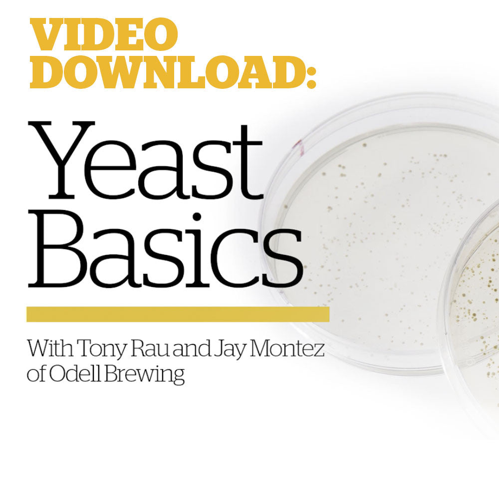 Basic Yeast Culturing & Banking (Video Download)
