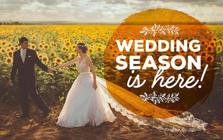 Wedding Season is Here! Celebrate with Treehut.co