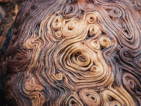 The unique swirls, patterns, and colors of burl wood