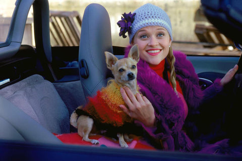 15 Famous Dog & Human Duos in Pop Culture: Bruiser and Elle