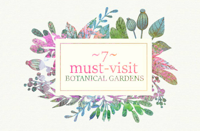 7 Must-Visit Botanical Gardens for a Romantic Outing