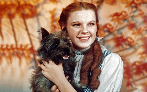 15 Famous Dog & Human Duos in Pop Culture: Toto and Dorothy in the Wizard of Oz