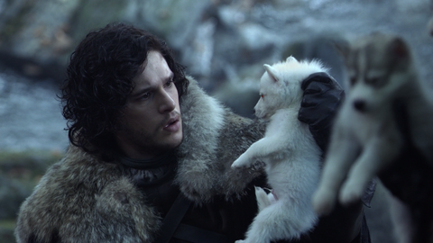 15 Famous Dog & Human Duos in Pop Culture: Jon Snow and his Direwolf Ghost