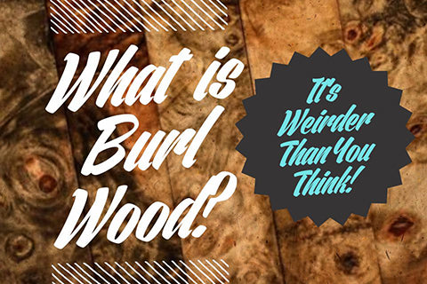 What is burl wood?