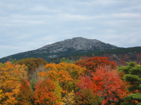 fall hike on mt. monadnock