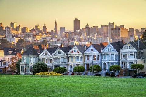 painted ladies, city landscape