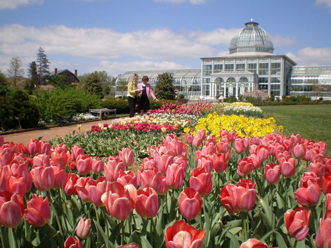 Lewis Ginter Botanical Gardens, Richmond, Virginia