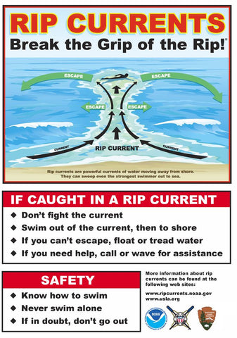 how to escape rip currents info graph