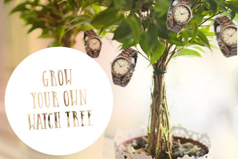 Treehut - How to grow a wooden watch tree