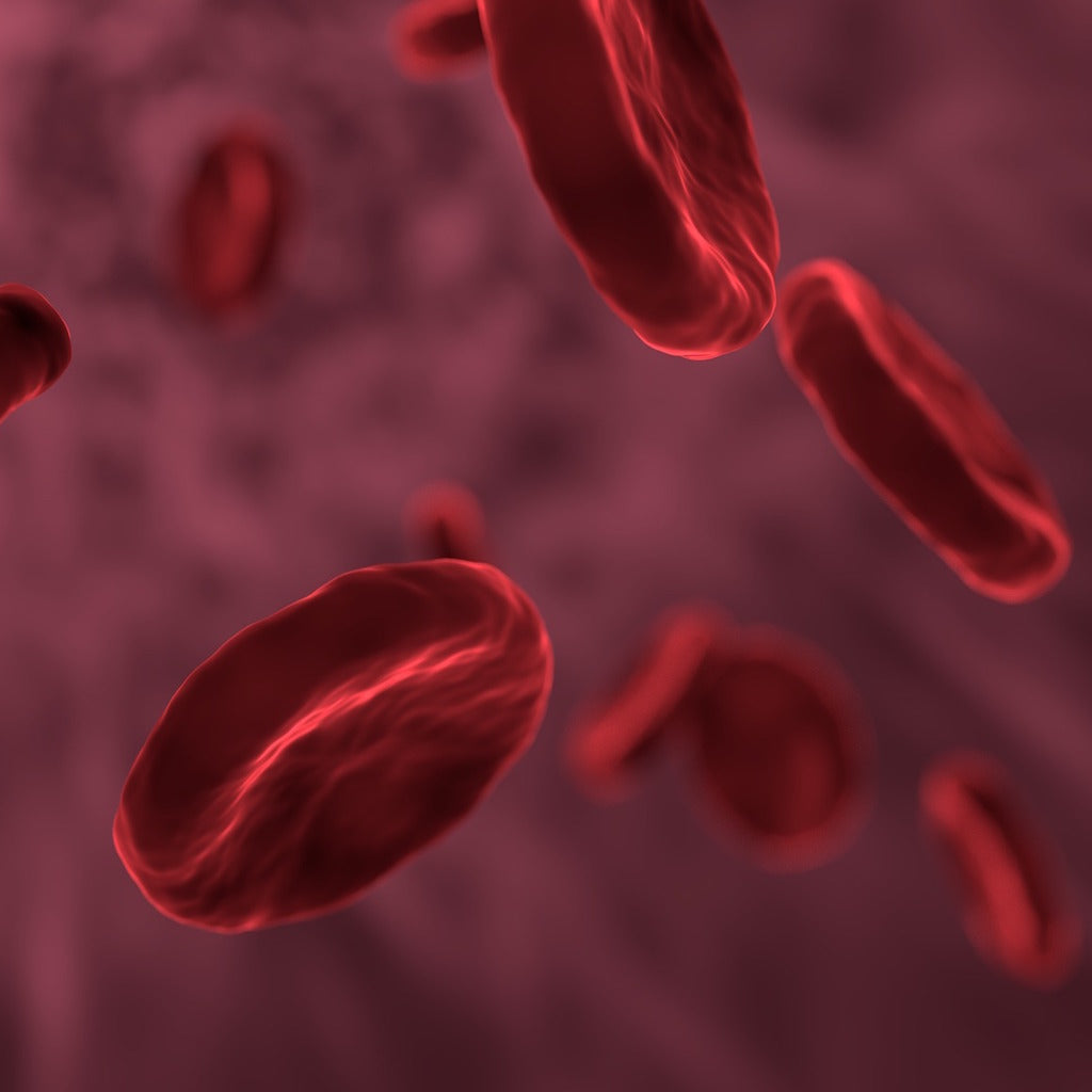 Celebrating National Hemophilia Day: What Is Hemophilia?