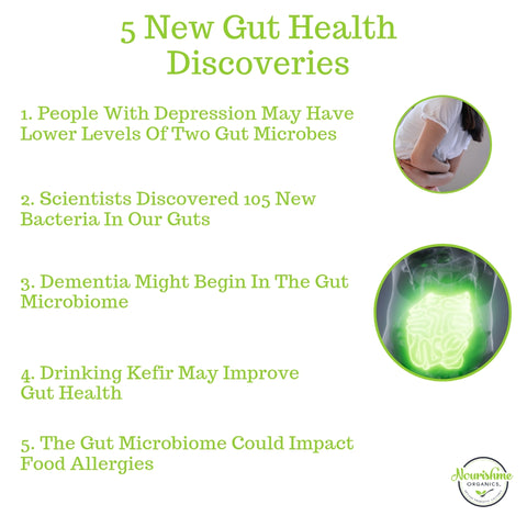 5 Gut Health Discoveries 2019