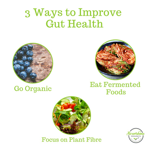 3 Ways to Improve your Gut Health