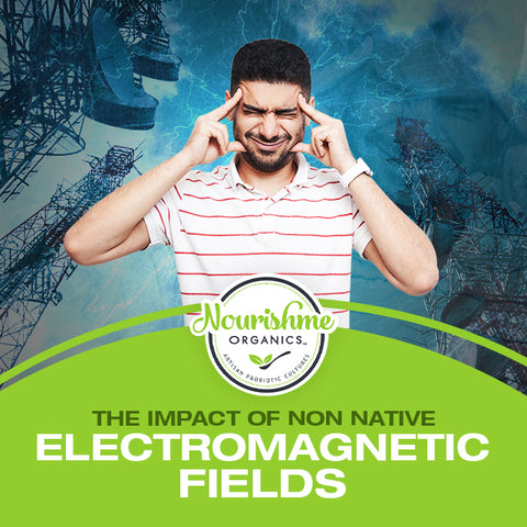The Impact of Non Native Electromagnetic Fields on Health