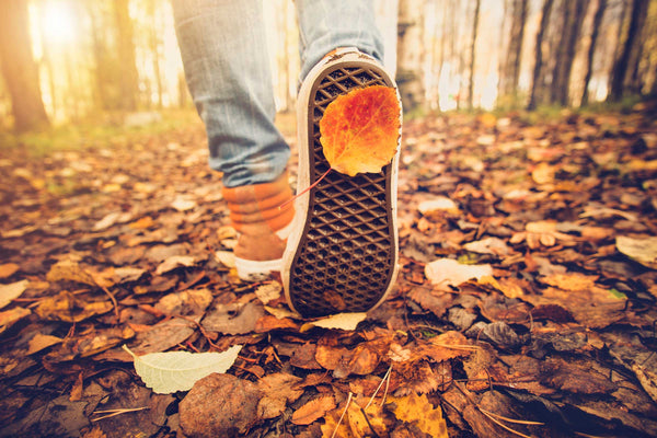 3 Fun Fall Activities For The Whole Family