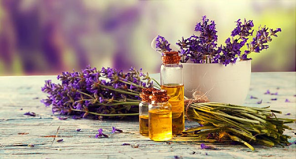 Our 3 Favourite Essential Oils to help heal Pesky Skin Issues Naturally