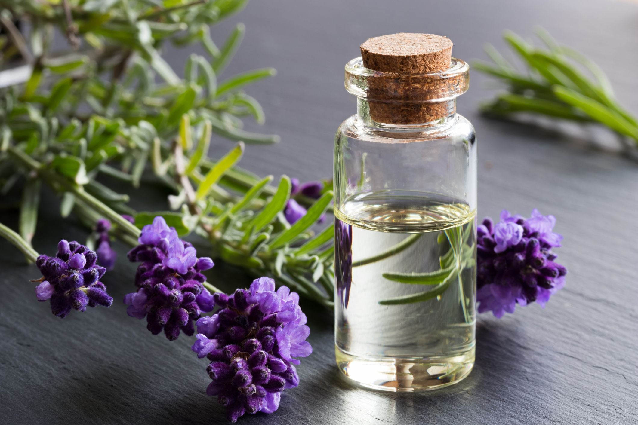 5 Common Essential Oil Questions Answered!