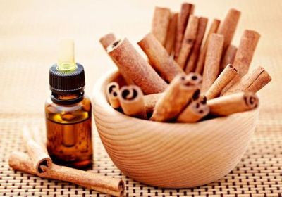 Essential Oil Spotlight: Cinnamon Leaf Essential Oil