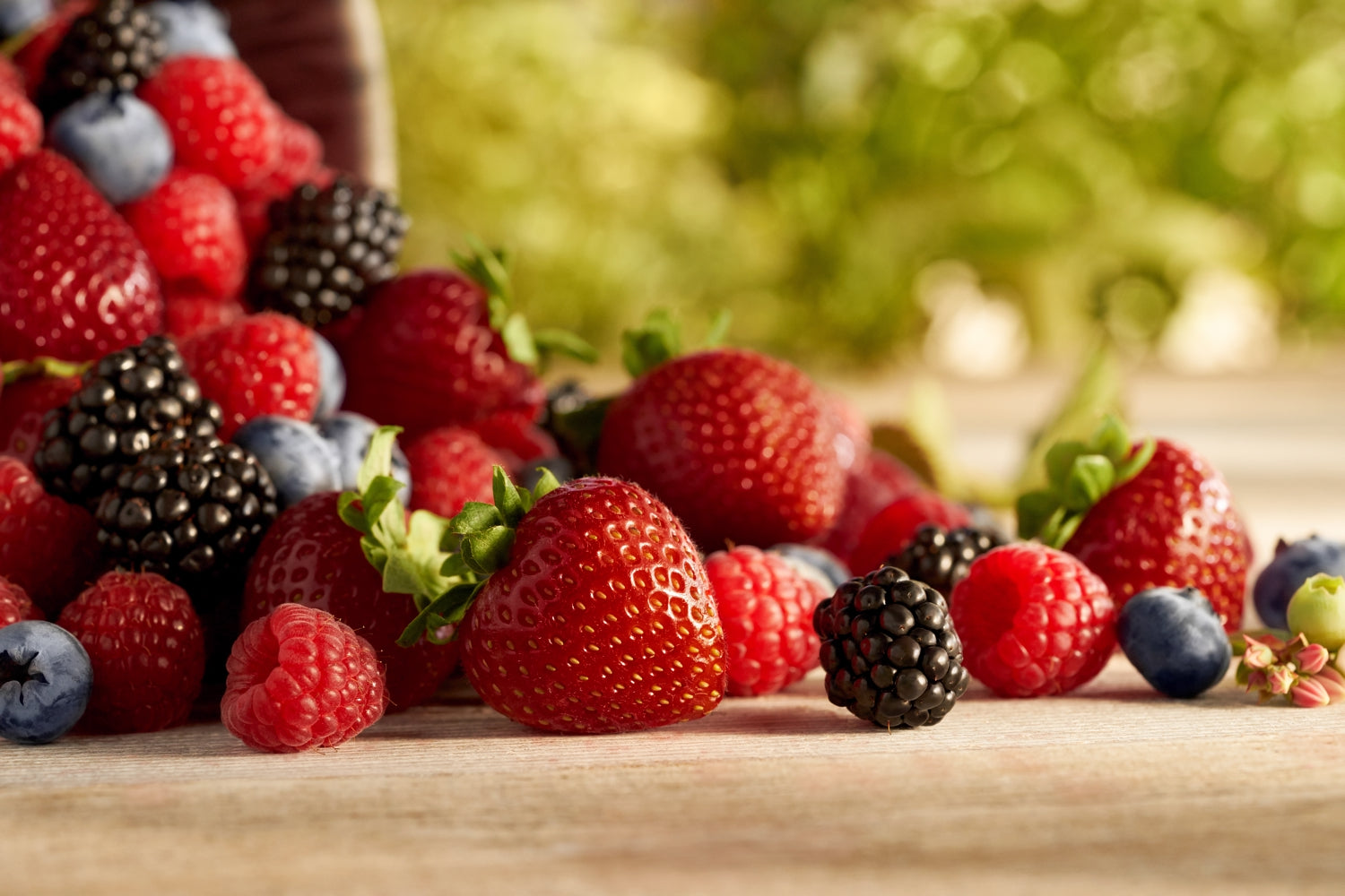 5 Of The Healthiest Berries You Can Munch On All Summer Long