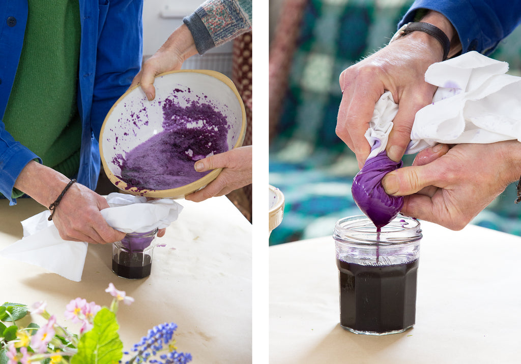 making plant pigments - red cabbage