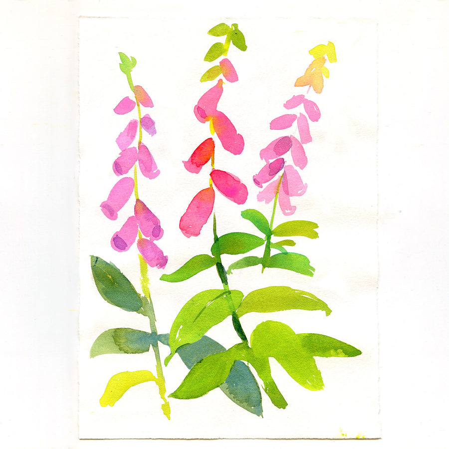 Modern Watercolours - Online Course
