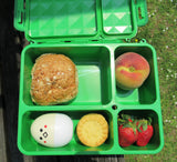 Go Green Lunchbox - Medium - Green. SORRY - ALL SOLD OUT IN 1 DAY!