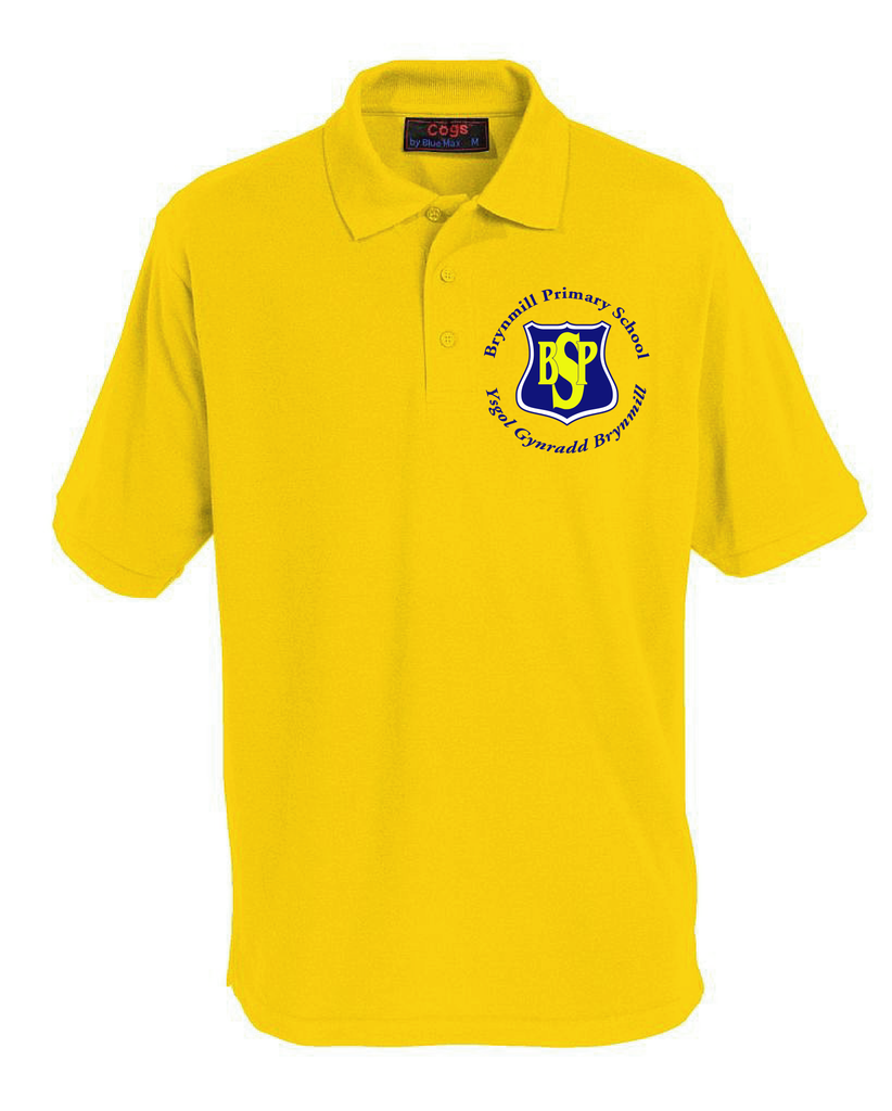 Brynmill Primary (Polo)