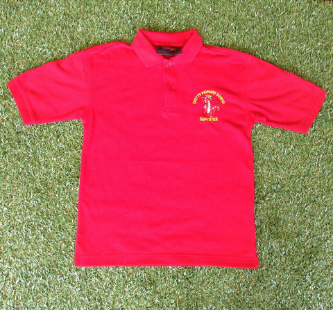 Sketty Super 6 (Polo) - Year 6 only