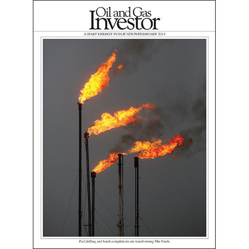 Oil and Gas Investor Magazine | February 2014 | Volume 34 | Issue 02