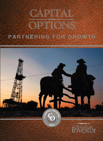 2016 Capital Options: Partnering for Growth