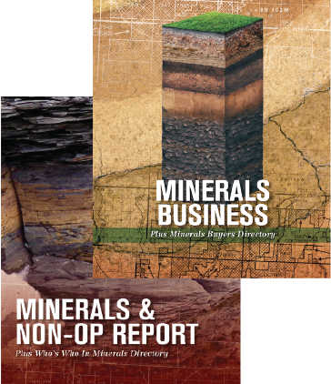 Oil and gas minerals directory and reports package