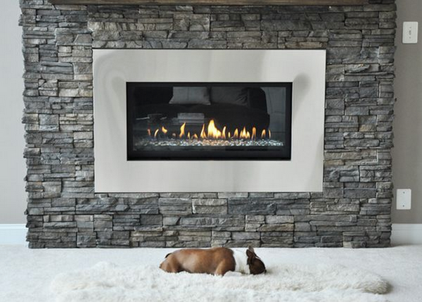 Modern Fireplace with a dog