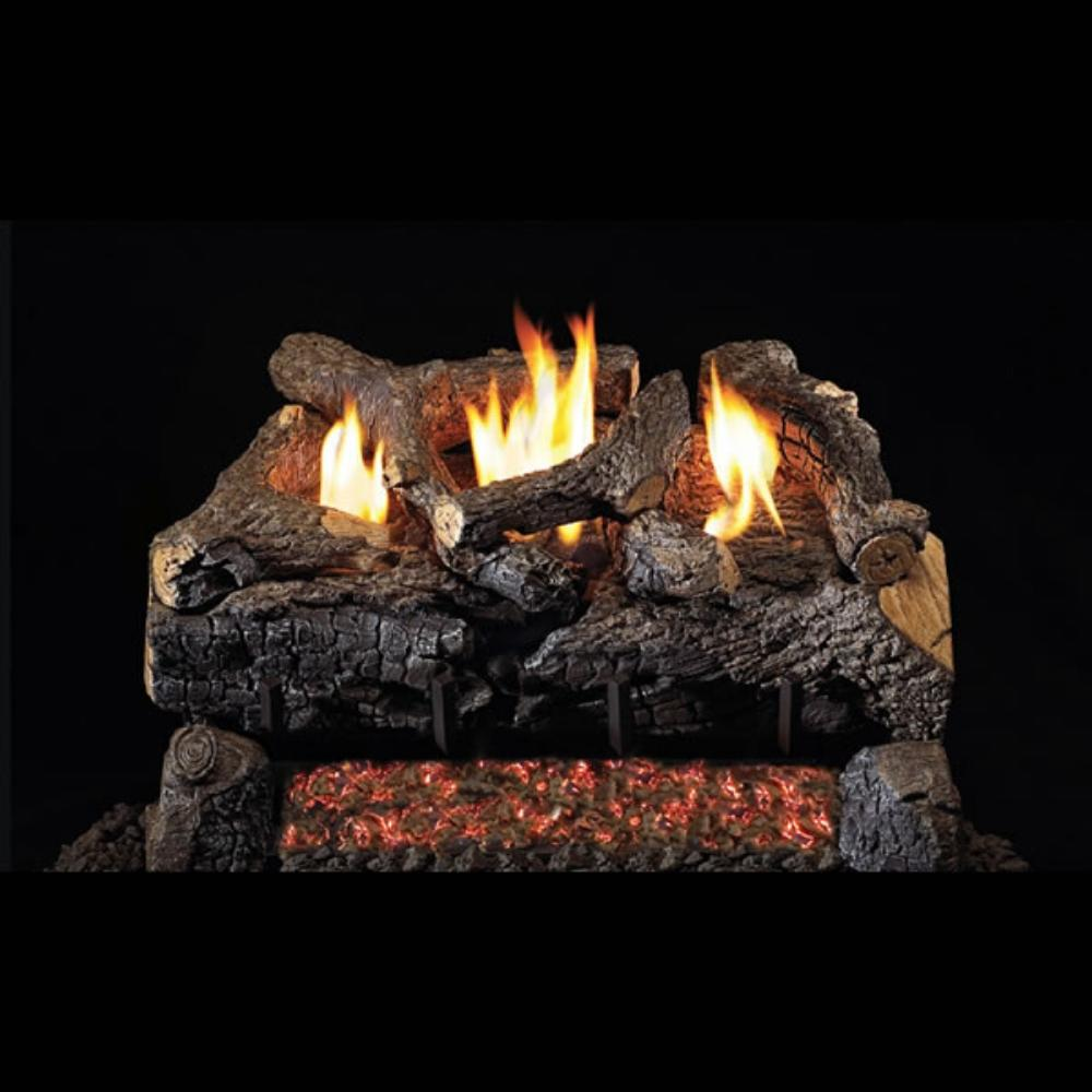 "Real Fyre Evening Fyre Charred 24"" See-Through Vent-Free Gas Log Set Insert"
