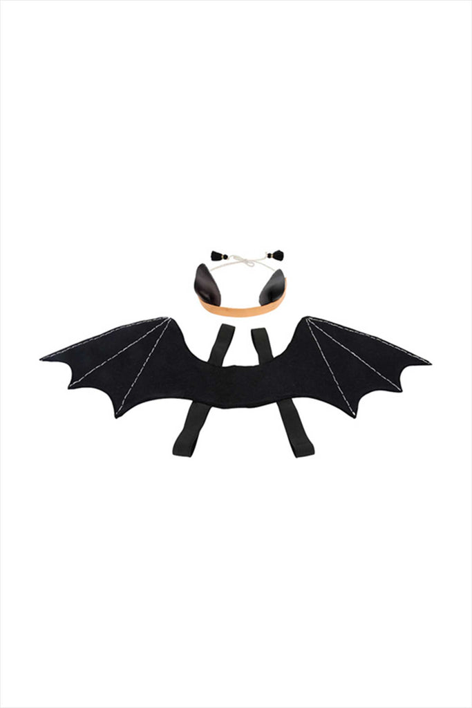 Spooky Bat Dress Up Kit