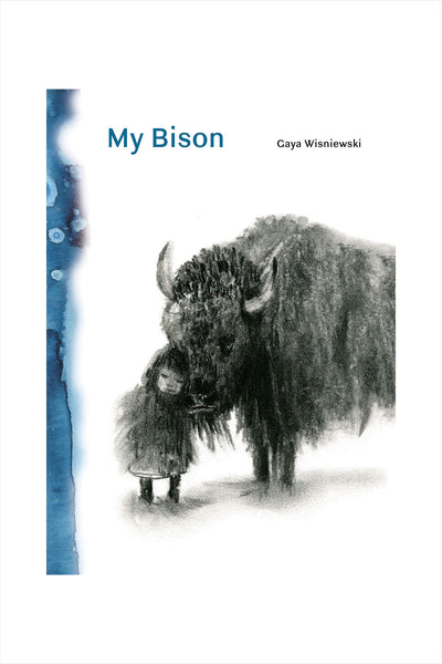 My Bison Children's Book