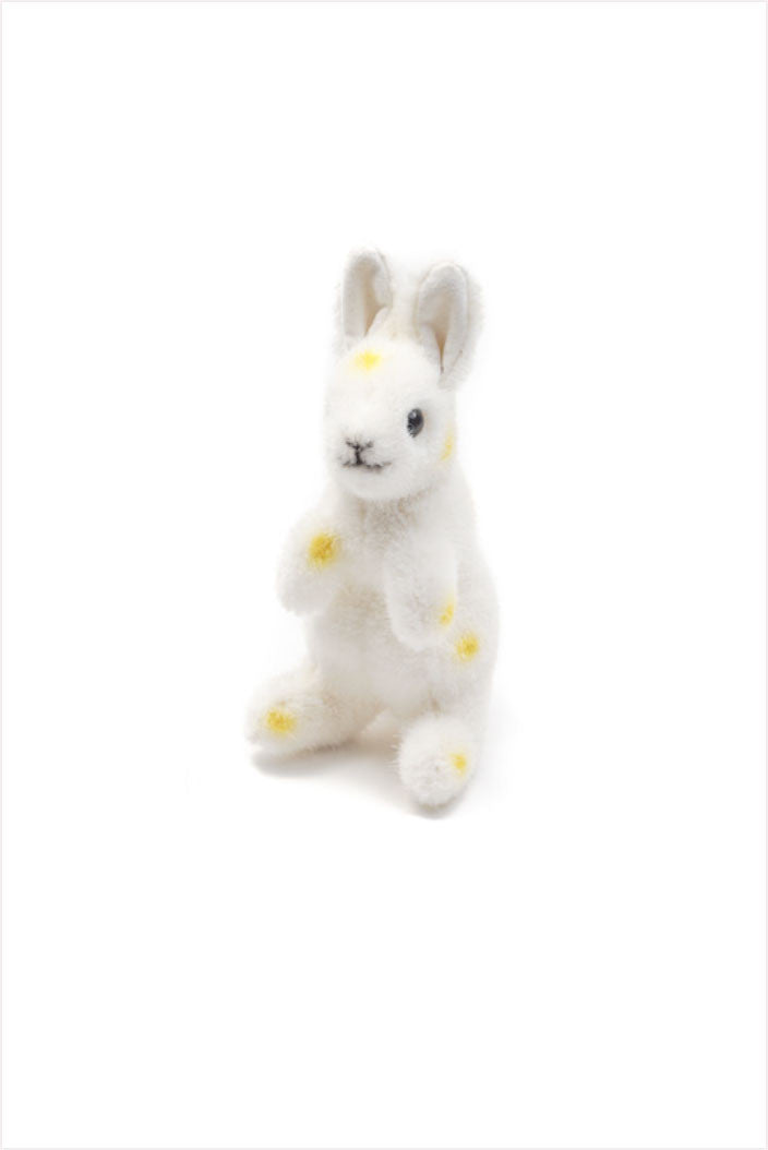 Polka Dot Yellow Hare