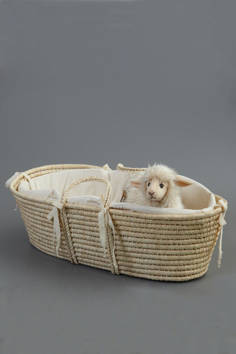 Baby Moses Basket Woven