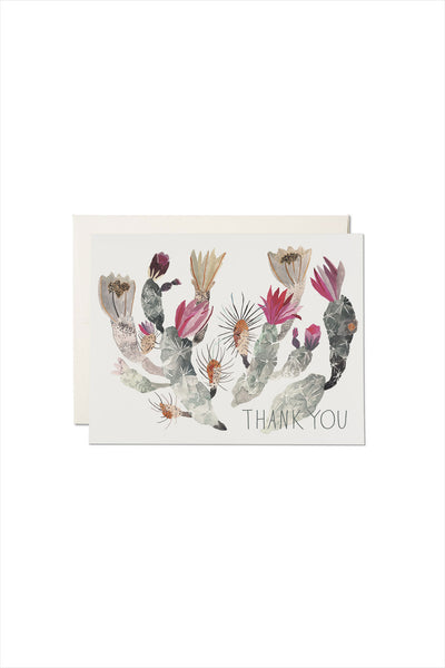 California Cactus Birthday Card
