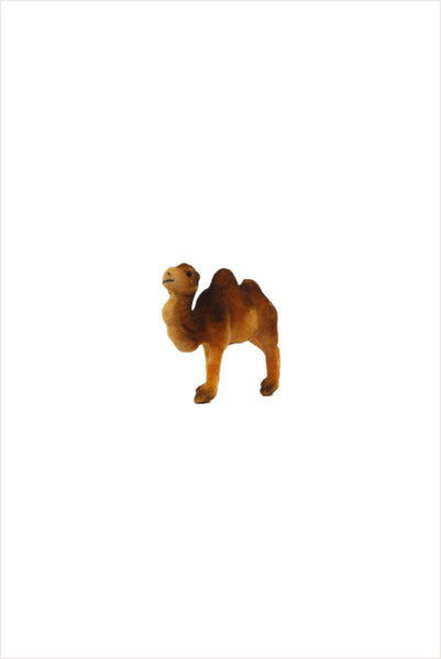Flocked Camel