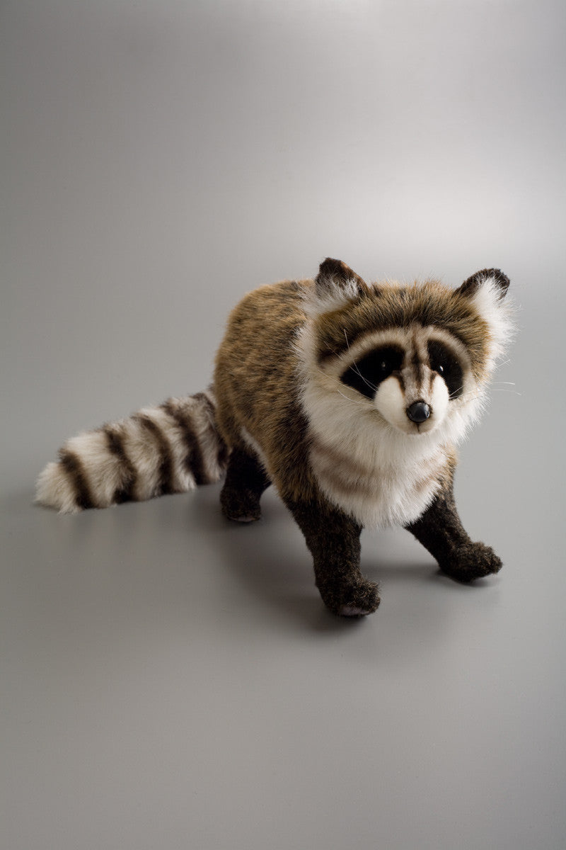Hansa Raccoon One Size