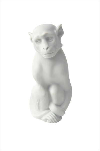 Nymphenburg Monkey