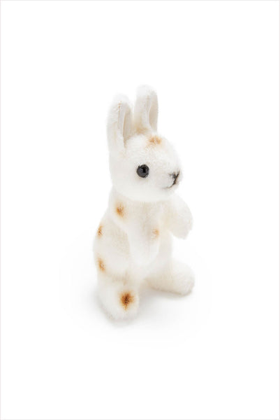 Polka Dot Brown Hare
