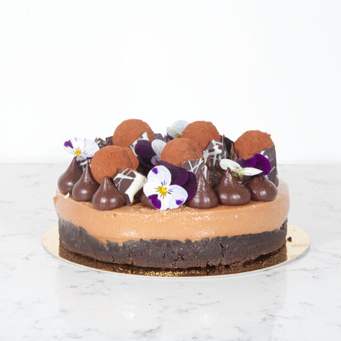 Chocolate Hazelnut Praline Cheesecake