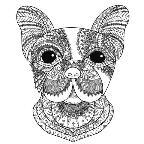 Boston Terrier Dog Tattoo Colouring Page
