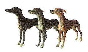 Greyhound Christmas Ornament (set of 3)