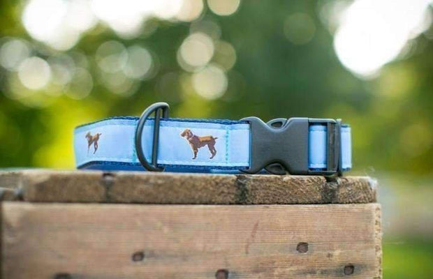 Little Brown Dog Collar - Light Blue/Navy - Little Brown Dog Southern Trade Co