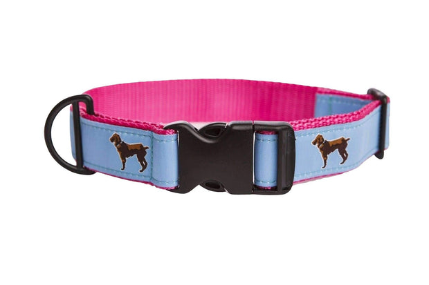 Little Brown Dog Collar - Light Blue/Pink - Little Brown Dog Southern Trade Co