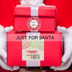 from santa personalized products